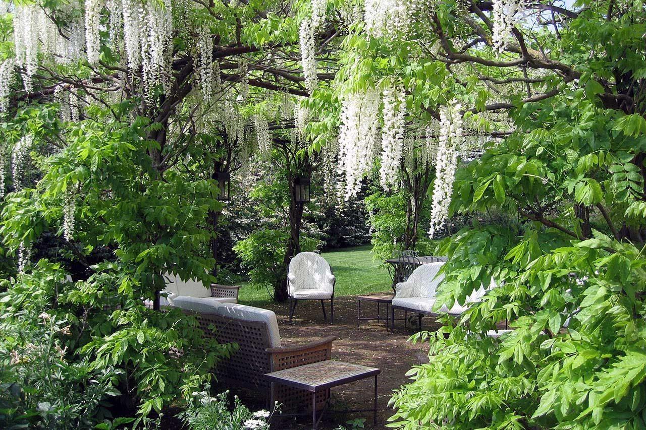 I 5 Giardini piu belli del Centro Italia da visitare almeno una volta Torrecchia Vecchia Lazio