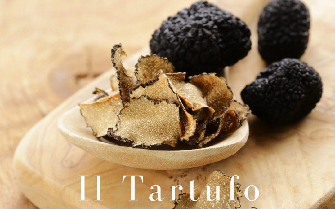 Il tartufo: la più alta tra le esperienze culinarie e di degustazione